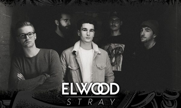 Core-Fest-2021---Announcement-Elwood_Stray
